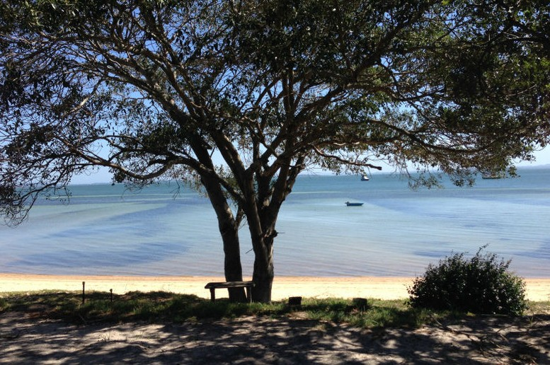 Adams Beach Camping Ground - New South Wales Tourism