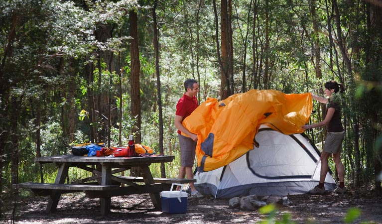 Bald Rock campground and picnic area - New South Wales Tourism