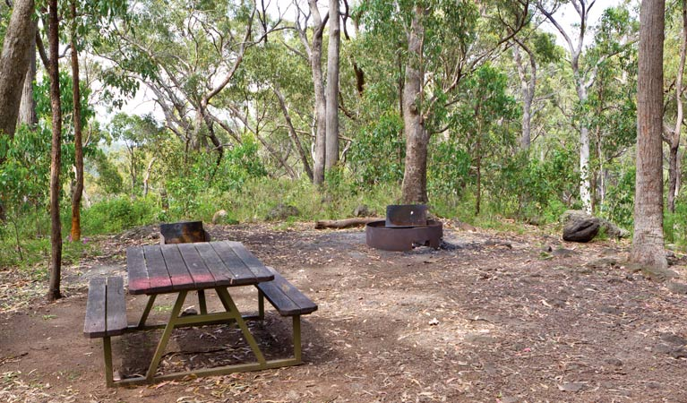 Bark Hut picnic area and campground - New South Wales Tourism