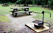 Bellbird campground - New South Wales Tourism