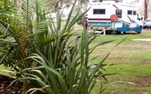 Buronga Riverside Caravan Park - New South Wales Tourism
