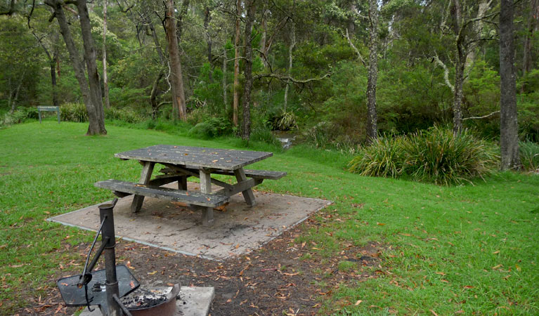 Chaelundi campground - New South Wales Tourism