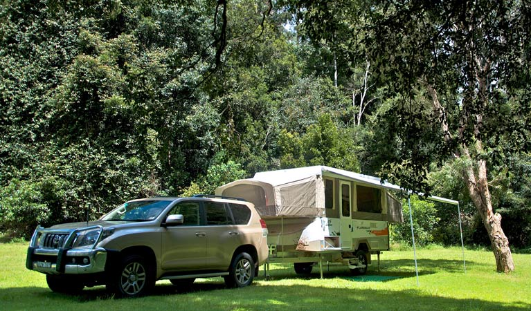 Gloucester River campground - New South Wales Tourism