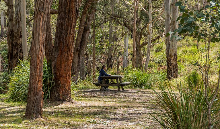 Koreelah Creek campground - New South Wales Tourism
