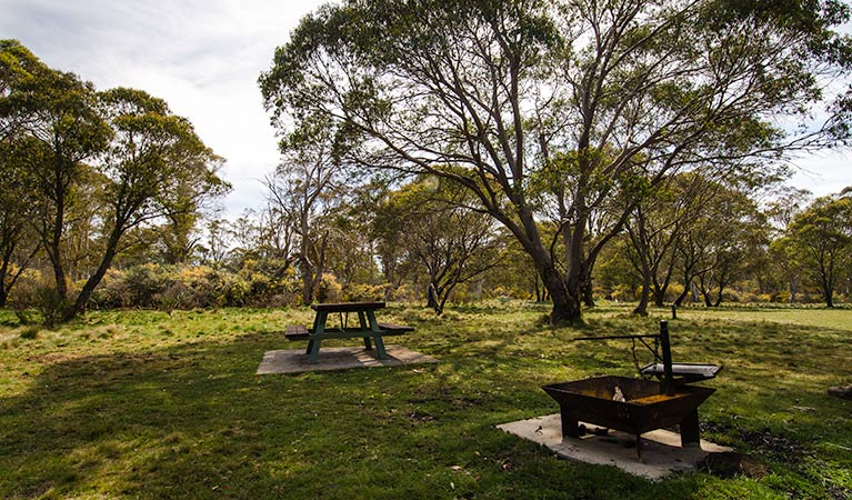 Little Murray campground - New South Wales Tourism