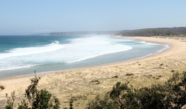 Middle Beach campground - New South Wales Tourism
