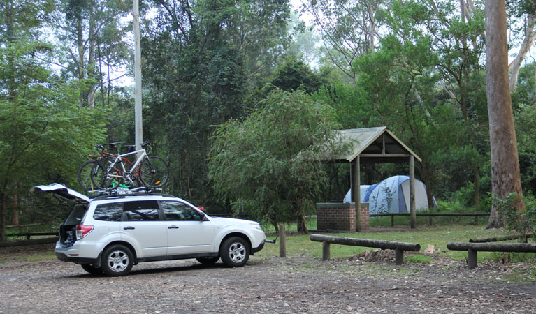 Mill Creek campground - New South Wales Tourism