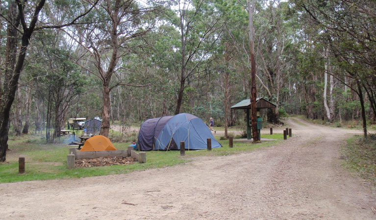 Native Dog campground - New South Wales Tourism