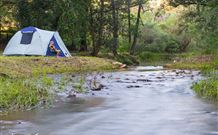 Nymboida Camping  Canoeing - New South Wales Tourism