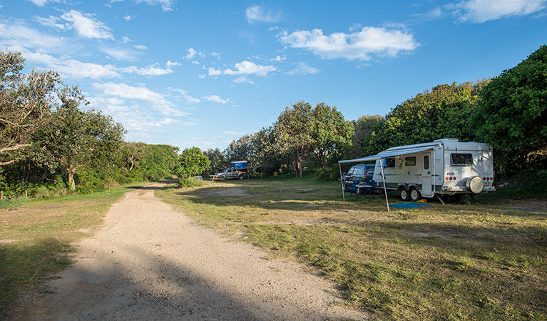 Racecourse Campground - New South Wales Tourism