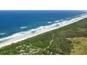 Wooyung Beach Holiday Park - New South Wales Tourism