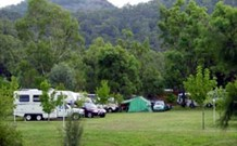 Sandy Hollow Tourist Park - Sandy Hollow - New South Wales Tourism