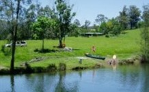 Bellingen Farmstay - New South Wales Tourism