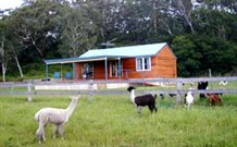 Moorallie Cottage Farm Stay - New South Wales Tourism