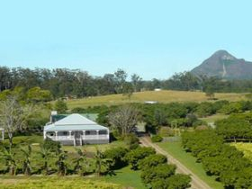 Mango Hill Farm - New South Wales Tourism