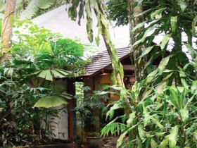 Heritage Lodge and Spa - In the Daintree - New South Wales Tourism