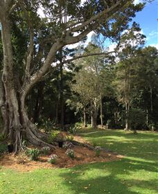 Beechmont Retreat - New South Wales Tourism