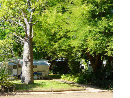 Town Caravan Park - New South Wales Tourism