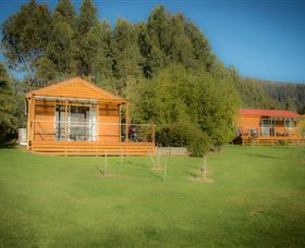 Maydena Country Cabins Accommodation  Alpaca Stud - New South Wales Tourism
