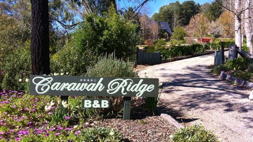 Carawah Ridge Bed and Breakfast - New South Wales Tourism