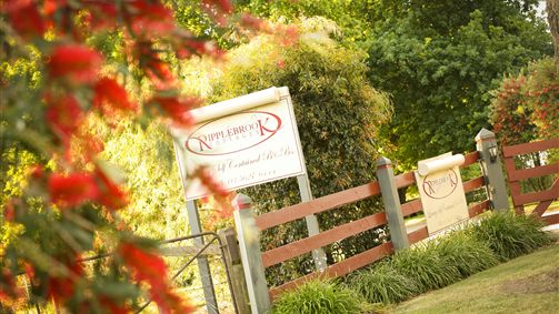 Ripplebrook Cottages - New South Wales Tourism