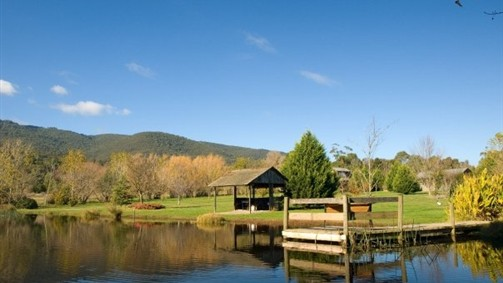 Sanctuary Park Cottages - New South Wales Tourism