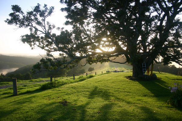 Kilfeacle Farm Cottage - New South Wales Tourism