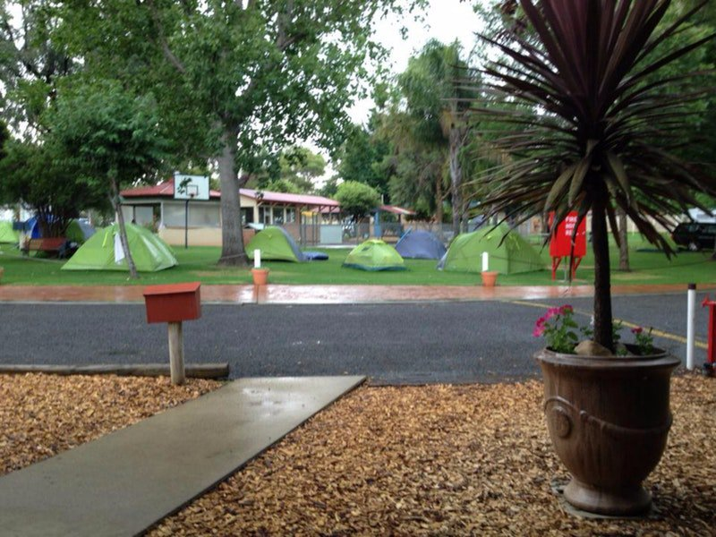 Young Caravan Tourist Park - New South Wales Tourism