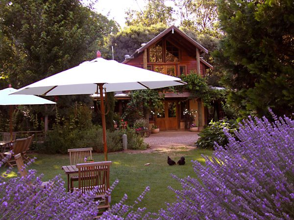 Lavender Hue - New South Wales Tourism