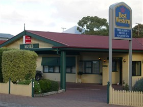 Best Western Melaleuca Apartments - New South Wales Tourism