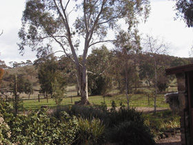 Settlers Cottage - New South Wales Tourism
