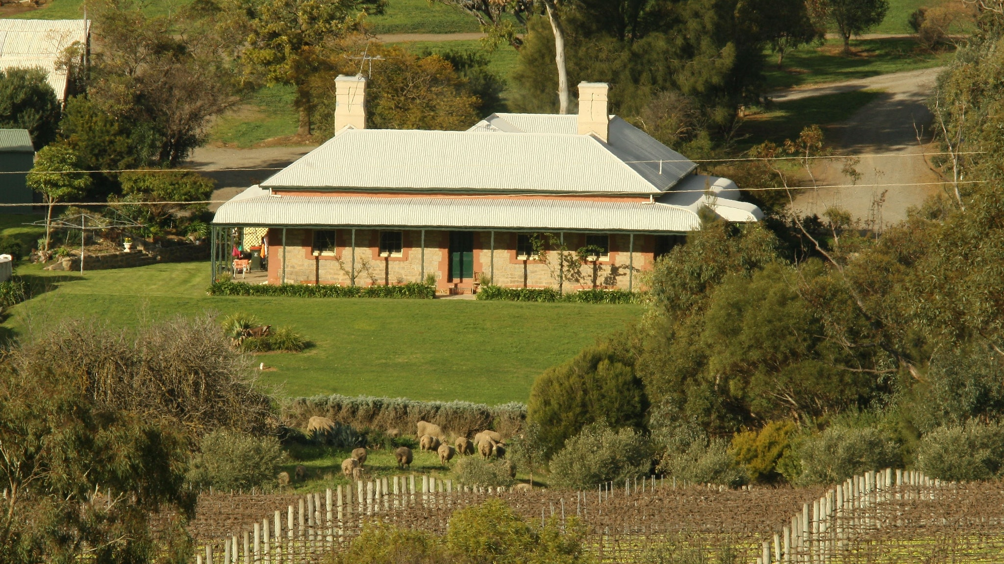 Oliver's White Hill Bed and Breakfast - New South Wales Tourism