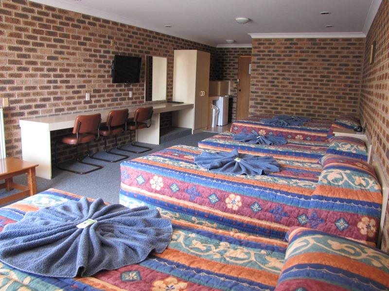 Big Trout Motor Inn - New South Wales Tourism