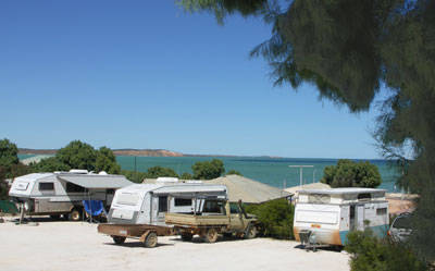 Blue Dolphin Caravan Park  Holiday Village - New South Wales Tourism