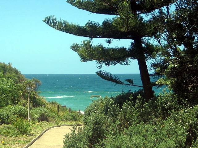 Seashells Beachfront Resort - New South Wales Tourism