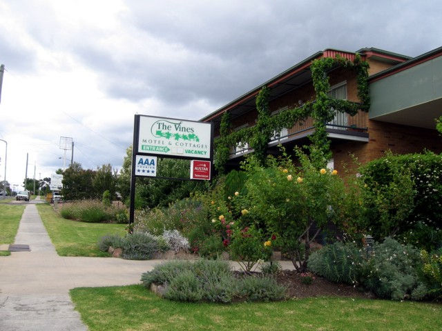 The Vines Motel  Cottages - New South Wales Tourism