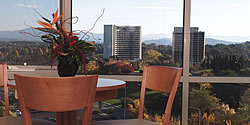 Waldorf Apartment Hotel Canberra - New South Wales Tourism