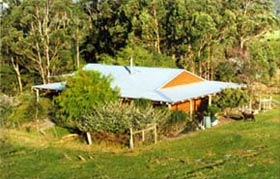 Cinnamon Coloureds Farmstay - New South Wales Tourism