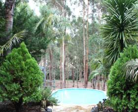 Fern Gulley Retreat - New South Wales Tourism