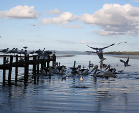 Pelicans At Denmark - Holiday Home - New South Wales Tourism