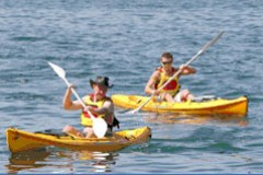 Manly Kayaks - New South Wales Tourism