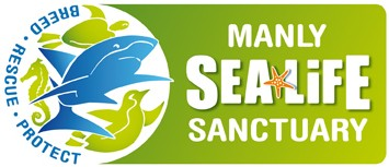 Manly SEA LIFE Sanctuary - New South Wales Tourism