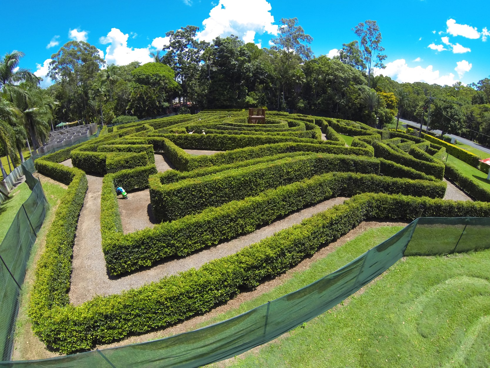 Bellingham Maze - New South Wales Tourism
