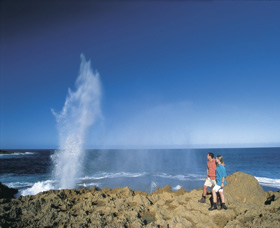 The Blowholes Carnarvon - New South Wales Tourism