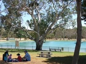 Naracoorte Nature Park and Swimming Lake - New South Wales Tourism