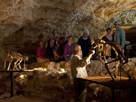 Naracoorte Caves National Park - New South Wales Tourism