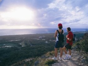 Mount Coolum National Park - New South Wales Tourism
