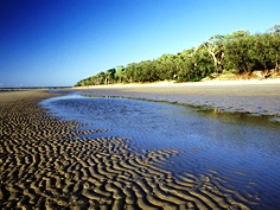 Burrum Coast National Park - New South Wales Tourism