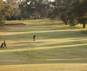 Cohuna Golf Club - New South Wales Tourism