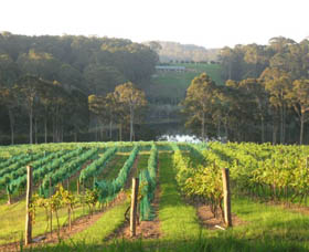 Tilba Valley Wines - New South Wales Tourism